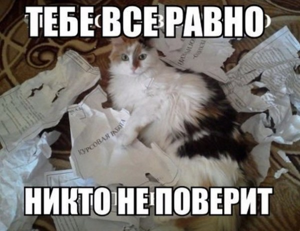 -Bu7QvWY-dY