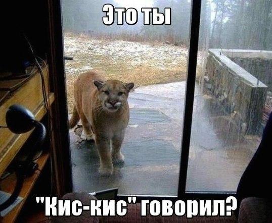 ttBK70G_H4w