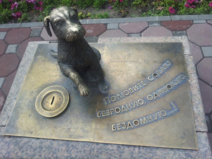 Памятник бездомной собаке, г. Тюмень