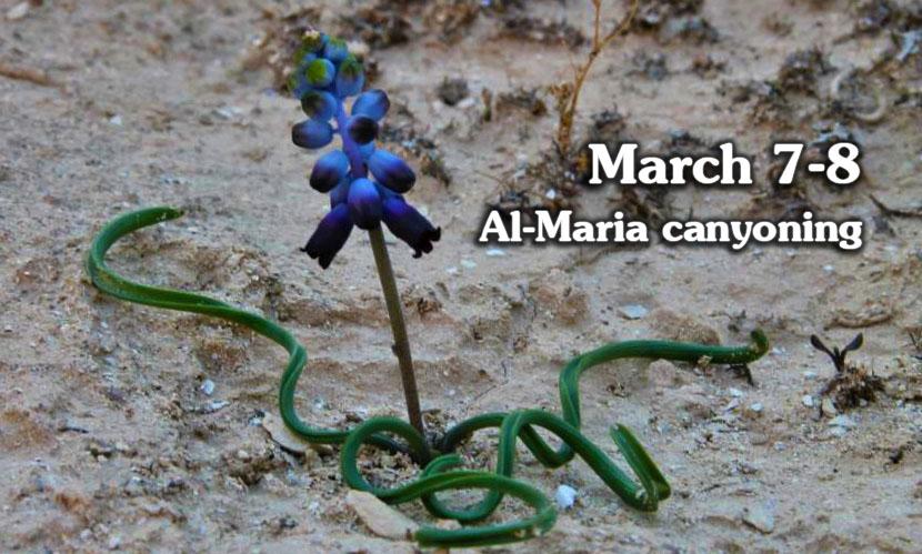 Al-Maria Canyoning in Israel