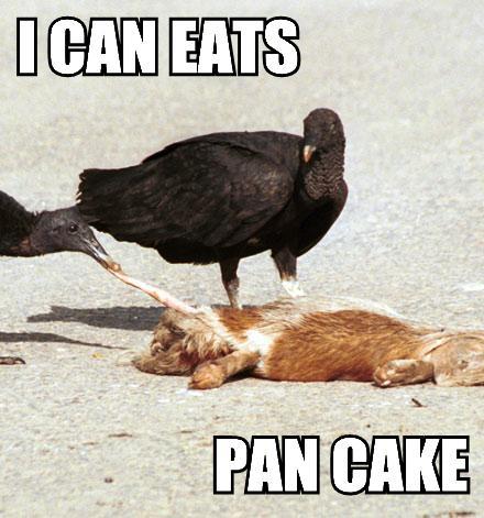 I CAN EATS PAN CAKE