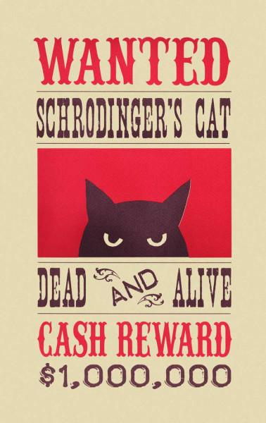 schrodingers-cat01