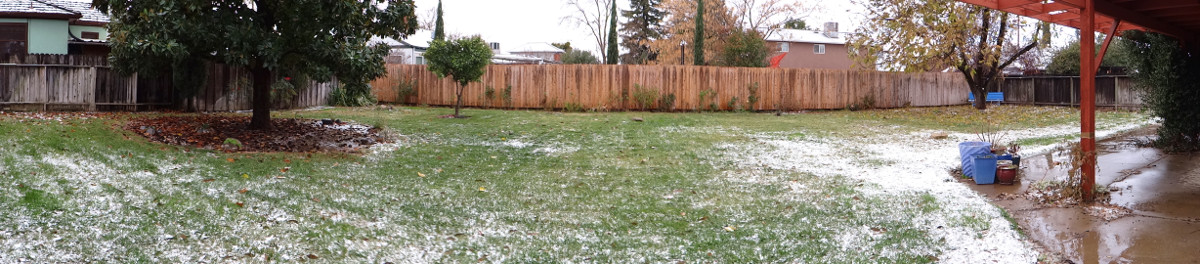 snow in the back yard!
