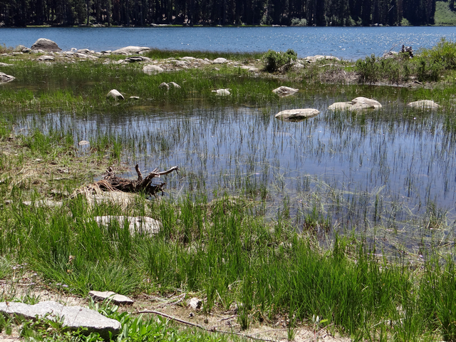 Silver Lake 8.jpg