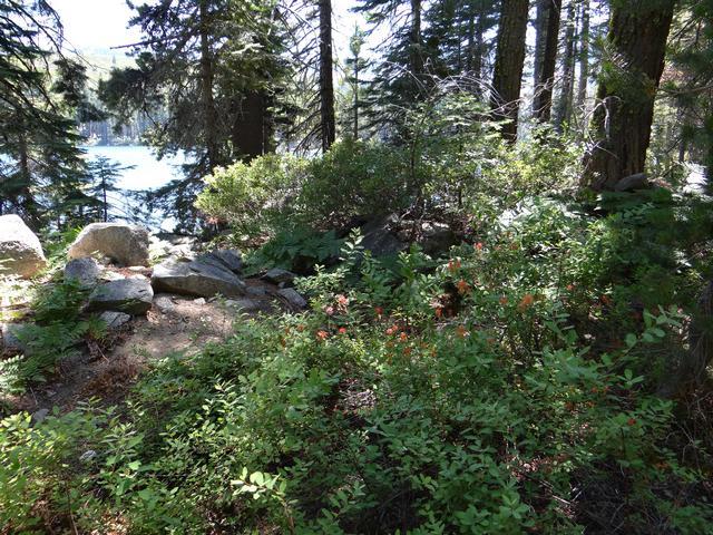 Silver Lake 11.jpg