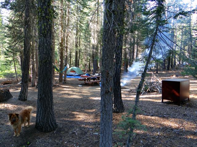 Silver Lake campsite 4.jpg