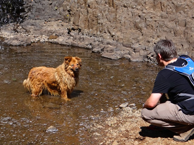 Barry and Boston at the base of Hollow Falls, May 2016