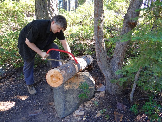 Barry sawing firewood