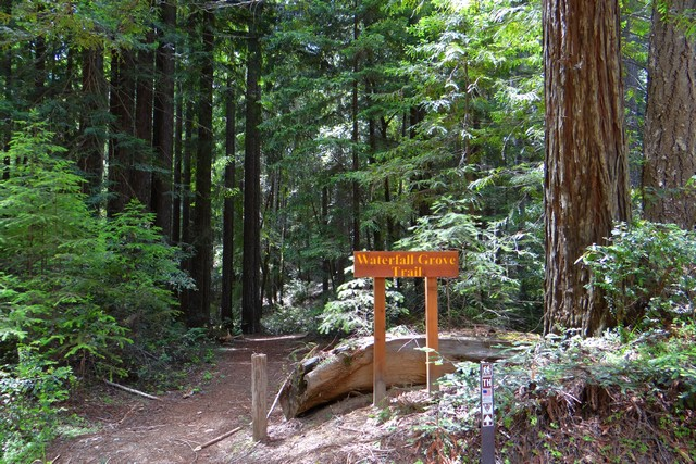 Waterfall Grove trailhead