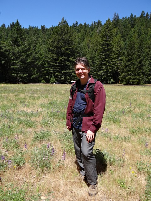 Barry in the lupine meadow