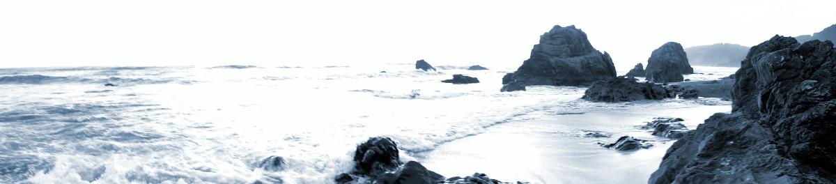 Westport-Union Landing State Beach monochrome panorama