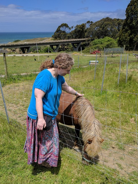 me with pony