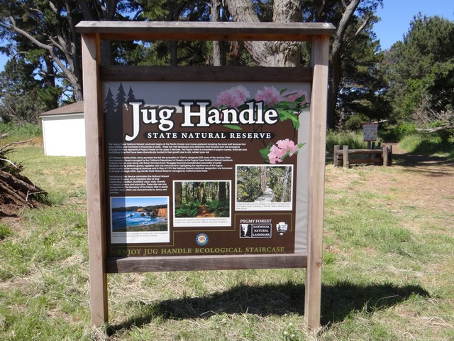 Jug Handle State Natural Reserve