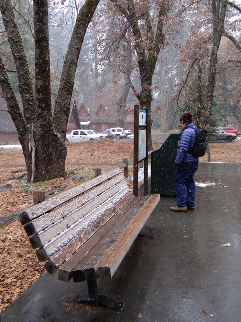 Barry at a shuttle stop in Yosemite Village, February 26, 2018