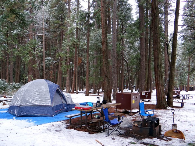Our campsite, February 2018
