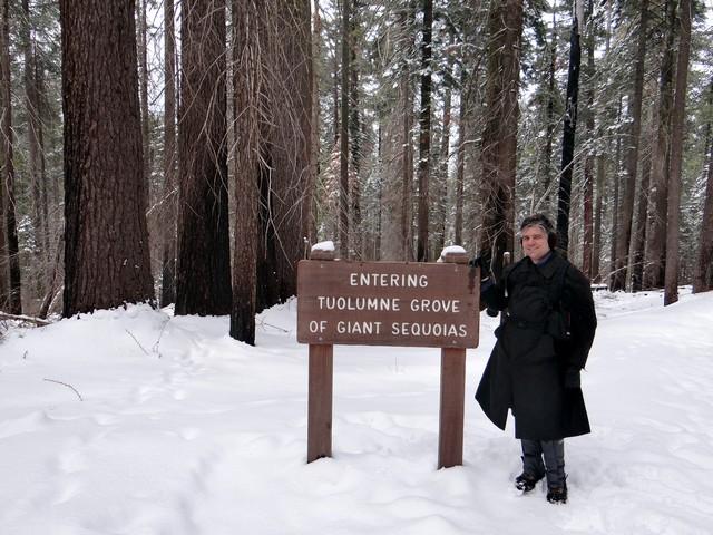 Barry in Tuolumne Grove of Giant Sequoias, February 28, 2018