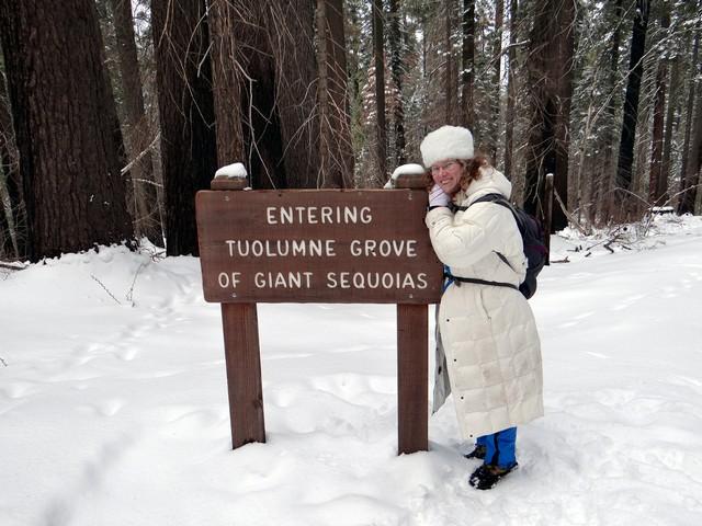 me in Tuolumne Grove of Giant Sequoias, February 28, 2018