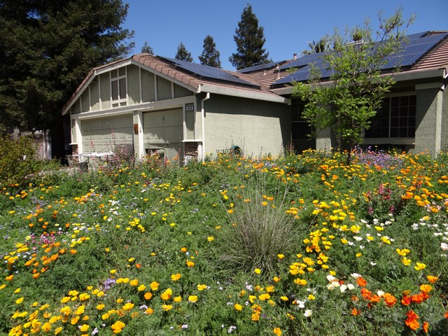 Gardens Gone Native Tour (April 14)