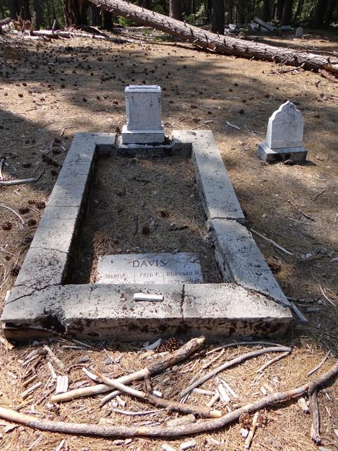 Davis grave in Port Wine cemetery