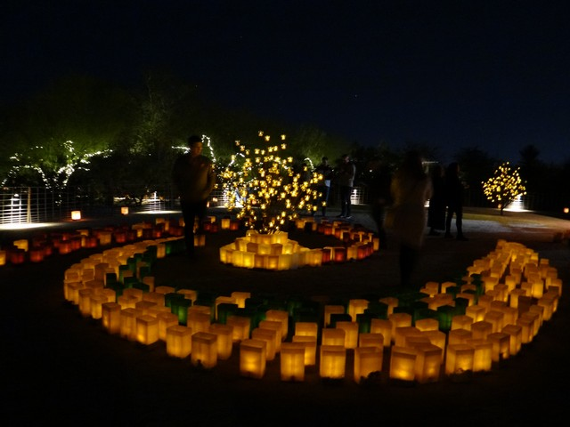 """Las Noches de Las Luminarias"" exhibit at the Desert Botanical Garden in Phoenix"