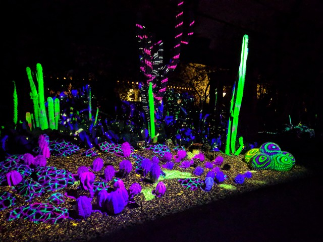 """Electric Desert"" exhibit at the Desert Botanical Garden in Phoenix"