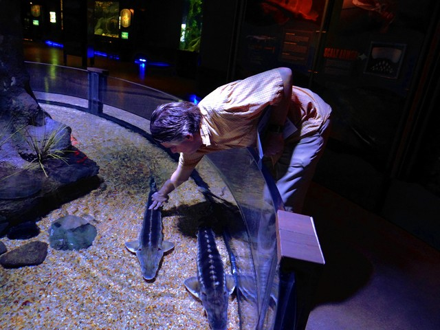 Barry at the OdySea Aquarium in the Desert