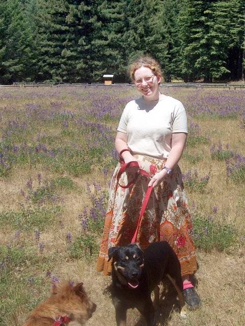 me with dogs in the field of lupine