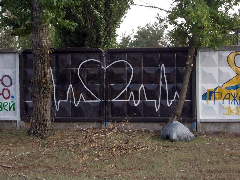 DSCN3982