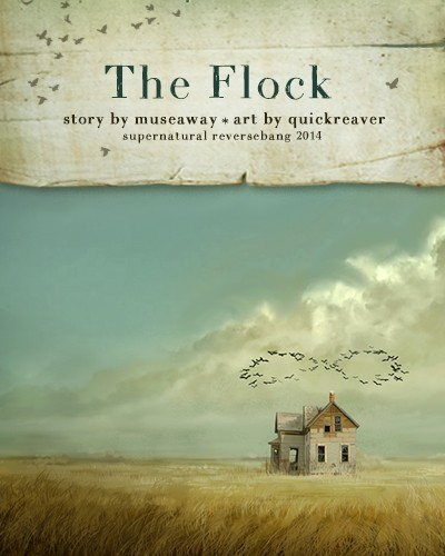 Flock_banner