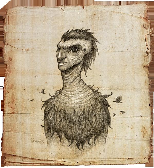Flock_crow