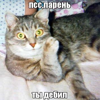 Ты_дебил.png