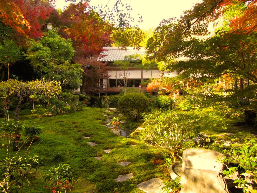 садик в Киото