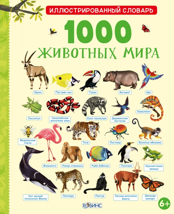 Смешные названия животных в картинках от а до