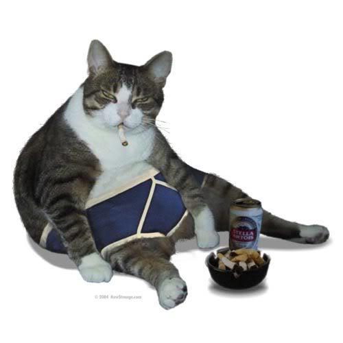 cat_pants_lrg