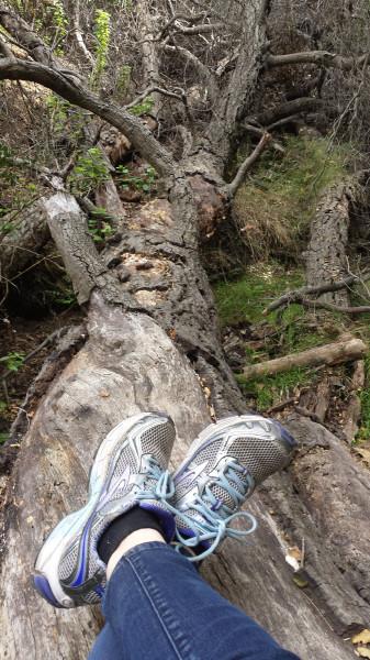Shoes on hike