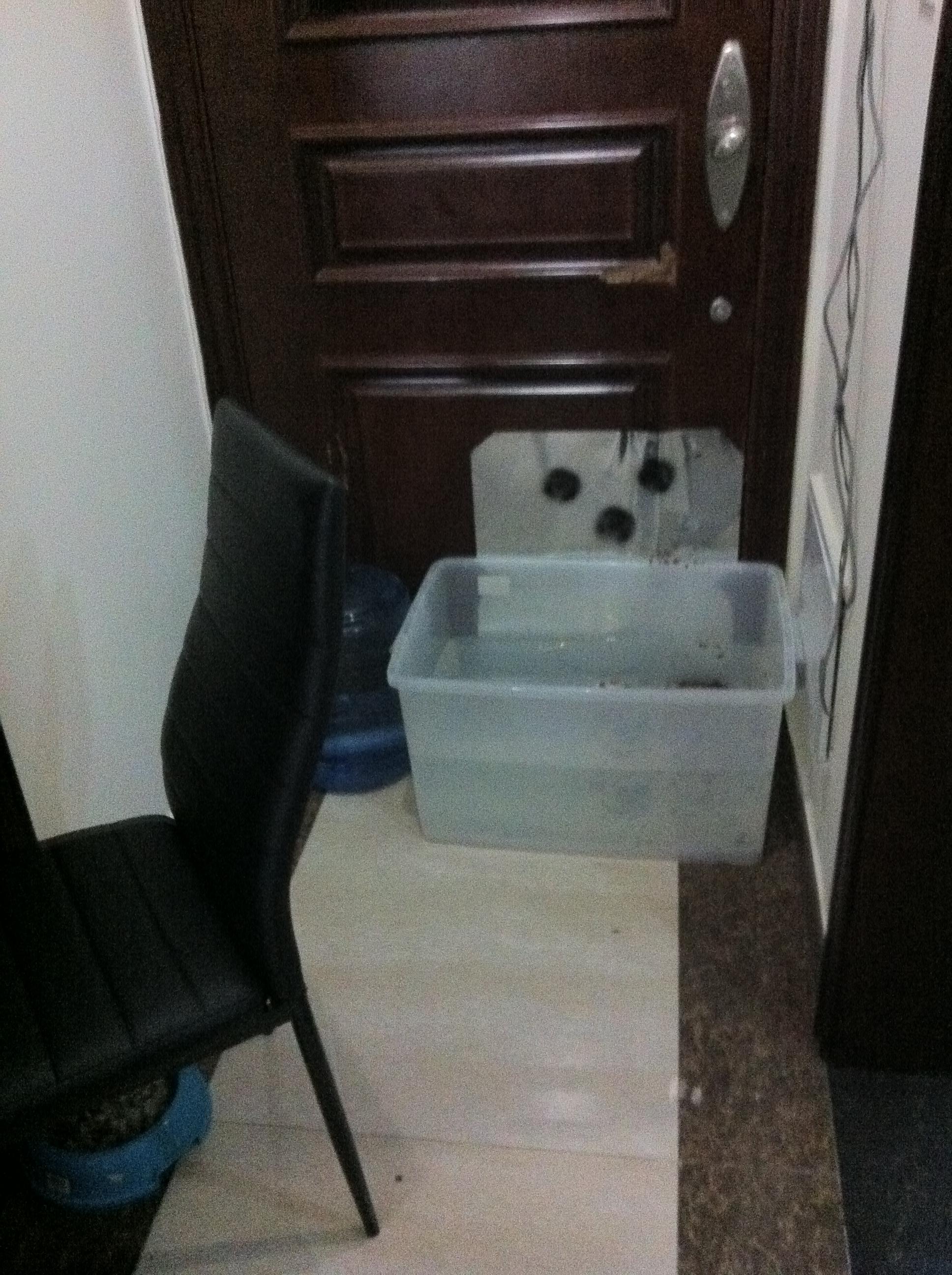 Защита  двери от собаки  (3)