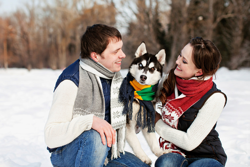 love story. Хаски. фотограф Павел Кузьмин