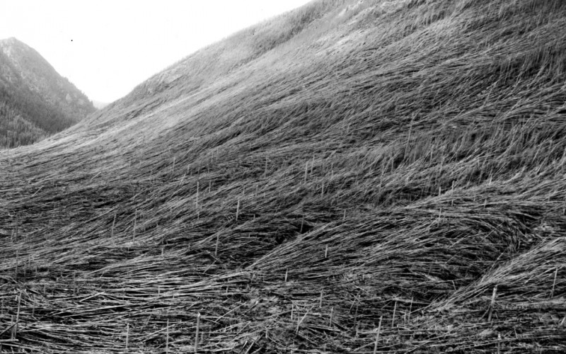 vulkan-Sent-Helens_16.jpg