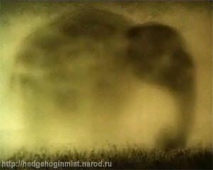 слон в тумане