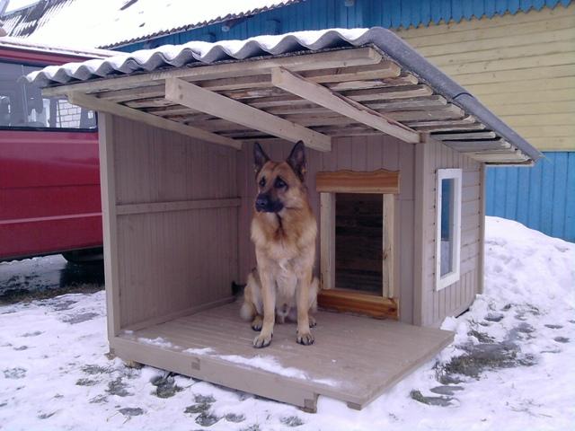 Будка для собак своими руками фото