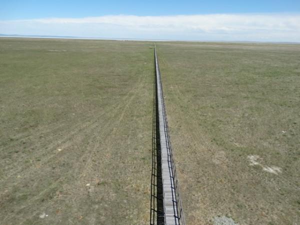 Настильная тропа. Фото Р.Рыгзыновой