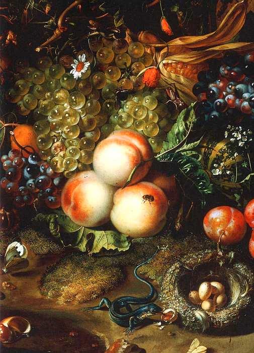81-Рахель Рюйш (1664–1750) Натюрморт с фруктами и цветами 1716 (фрагмент).jpg