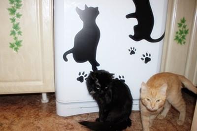 Чернилка-зараза!) и Рыжий Кот