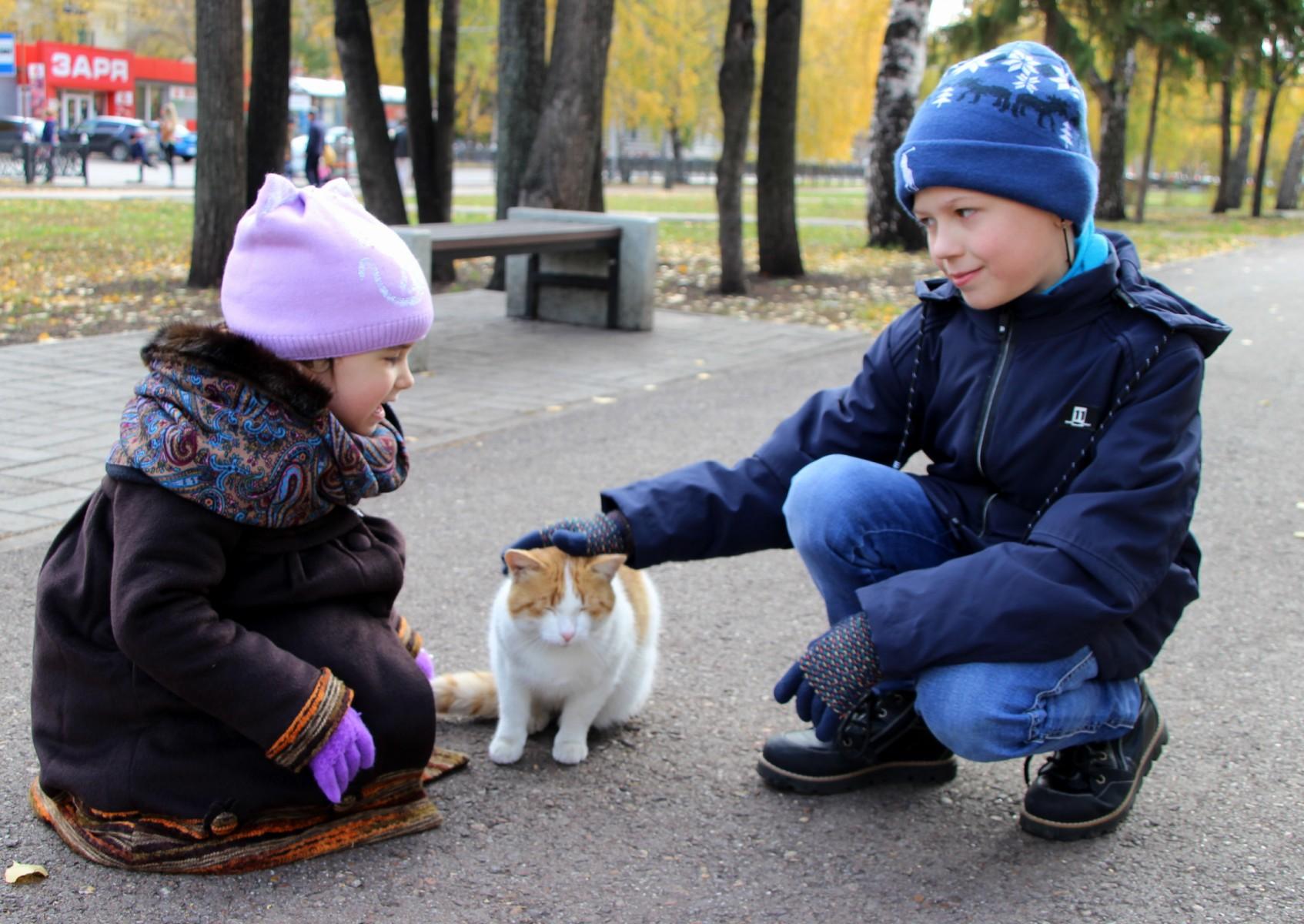 13-10-2018-дети и котя1.jpg
