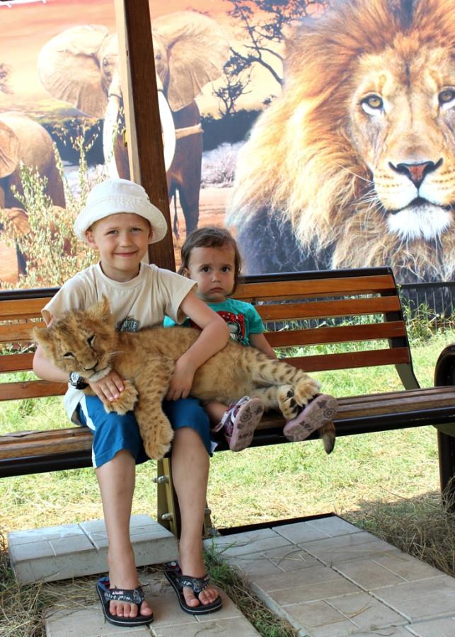 тайган-детки и львенок
