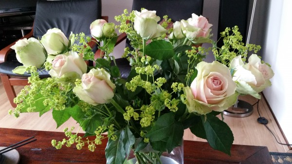 birthday roses_2.jpg