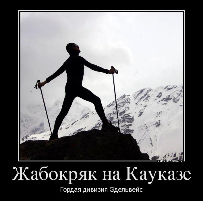 239258_zhabokryak-na-kaukaze_demotivators_to