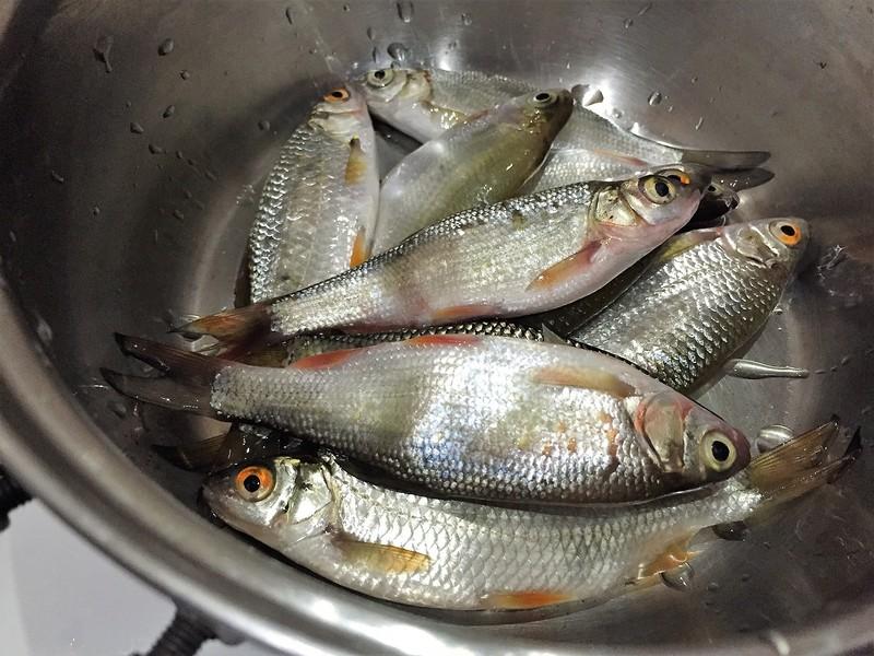 Рыбалка на реке Шуран