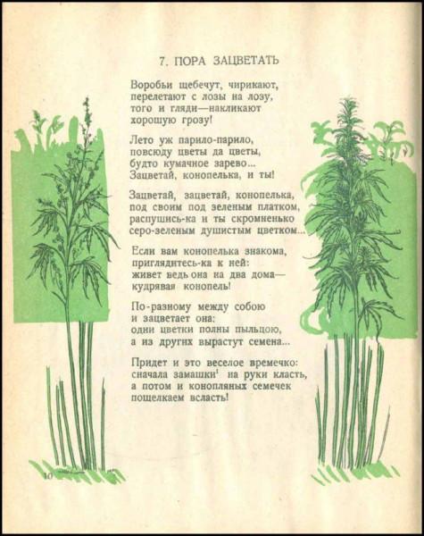 Стр. 10