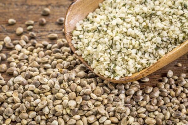 Откуда берется семя конопли кашель после курения марихуаны